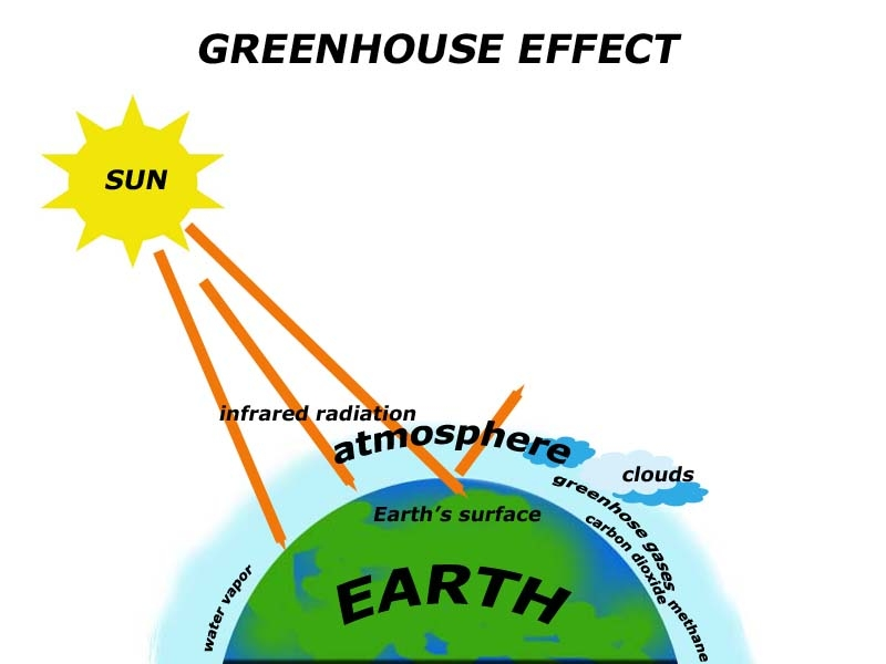 the greenhouse effect causes The greenhouse effect occurs when earth's atmosphere traps solar radiation because of the presence of certain gases, which causes temperatures to rise.